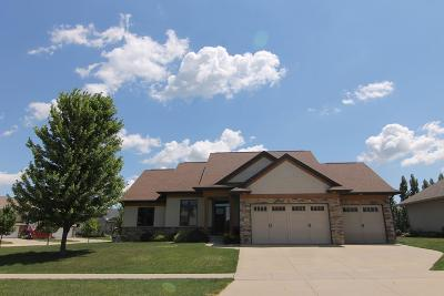 North Liberty Single Family Home For Sale: 315 Locust Dr