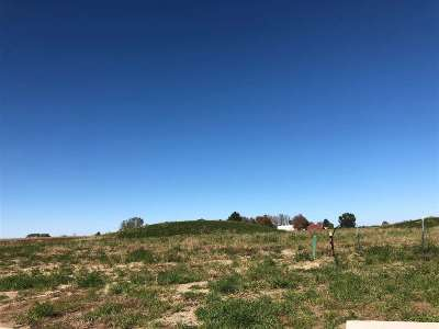 North Liberty Residential Lots & Land For Sale: Lot 6 Mickelson 1st Addition