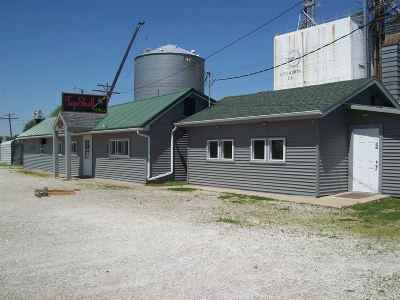 Ainsworth IA Commercial For Sale: $159,000