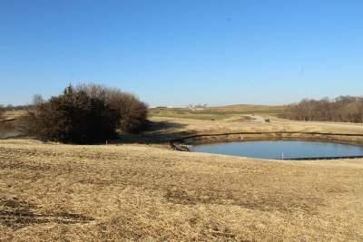 Tiffin Residential Lots & Land For Sale: Lot 29 Prairie Village Part 1