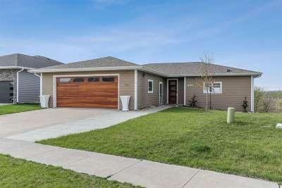 Johnson County Single Family Home For Sale: 1067 Langenberg Avenue