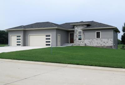 Milford Single Family Home For Sale: 3205 Prairie Meadows Drive