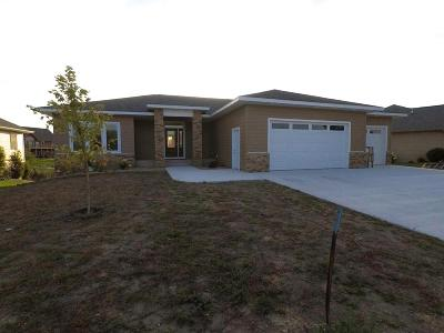 Milford Single Family Home For Sale: 3007 Chaplin Drive