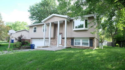 Spirit Lake Single Family Home For Sale: 707 Ithaca Avenue