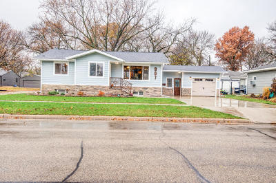 Milford Single Family Home For Sale: 907 M Avenue