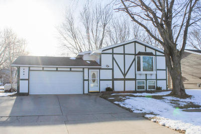 Lake Park Single Family Home For Sale: 209 6th Street E