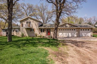 Spirit Lake Single Family Home For Sale: 25784 Babs Street