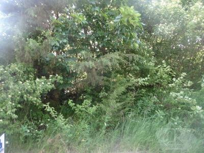 Brooklyn Residential Lots & Land For Sale: 4086 Tracey Drive