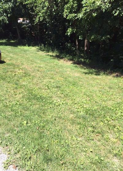 Brooklyn Residential Lots & Land For Sale: 1254 Holiday Lane