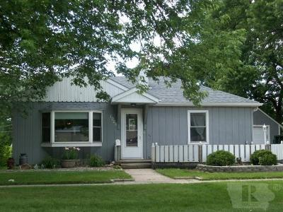Grinnell Single Family Home For Sale: 1029 Reed Street