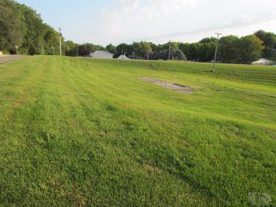 Brooklyn Residential Lots & Land For Sale: 215 High Street