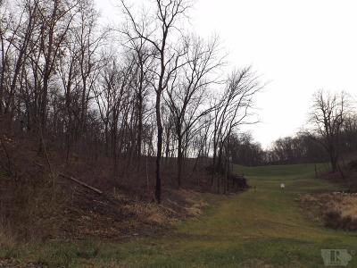 Brooklyn Residential Lots & Land For Sale: 2287 S Lakeshore Drive