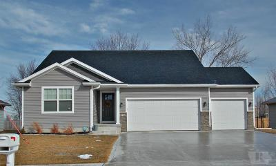 Marshalltown Single Family Home For Sale: 3311 Lily Lane