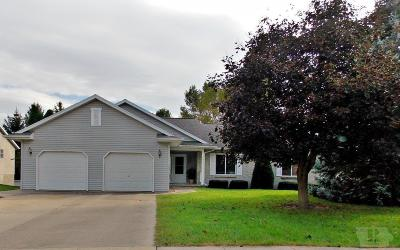 Marshalltown Single Family Home For Sale: 306 Richard Lane