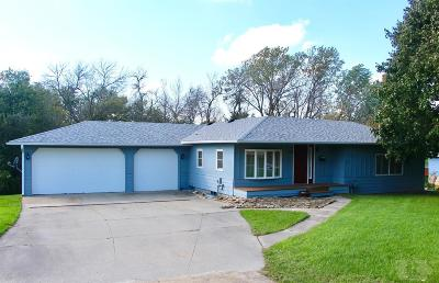 Grinnell Single Family Home For Sale: 1003 Prairie Street