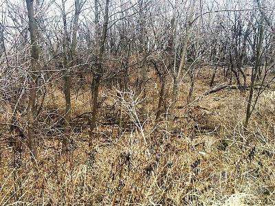 Residential Lots & Land For Sale: 6023 Waukonda Drive