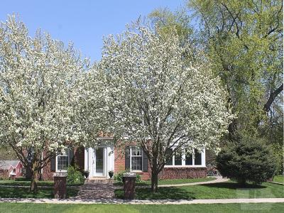 Forest City Single Family Home For Sale: 505 S 4th Street
