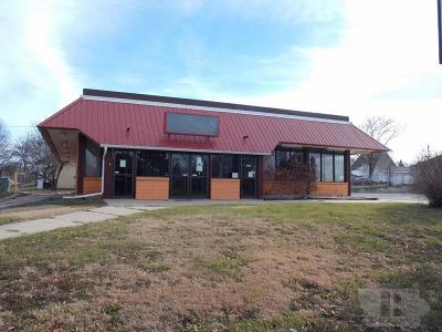 Mason City Commercial For Sale: 1303 S Federal Avenue