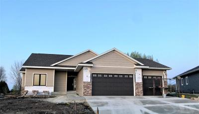 Clear Lake Single Family Home For Sale: 1204 Stenberg Drive