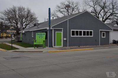 Clear Lake Commercial For Sale: 468 N Shore Drive