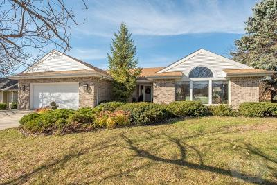 Mason City Single Family Home For Sale: 800 Briarstone Drive