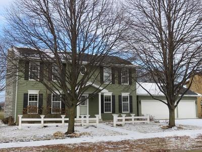 Mason City Single Family Home For Sale: 110 Woodbine