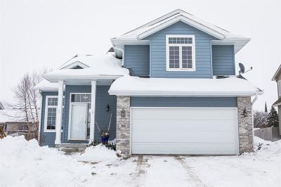 Clear Lake IA Single Family Home For Sale: $274,000