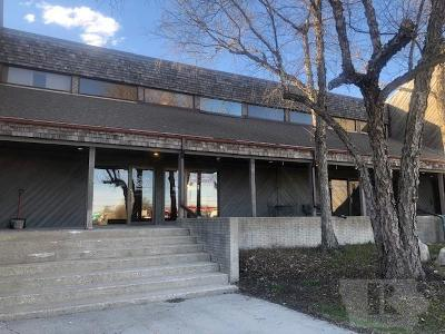 Clear Lake Commercial For Sale: 9 Plaza Drive #3