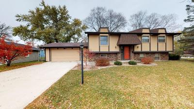 Mason City Single Family Home For Sale: 18 N Willowgreen Court