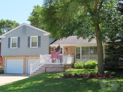 Mason City Single Family Home For Sale: 429 21st SW