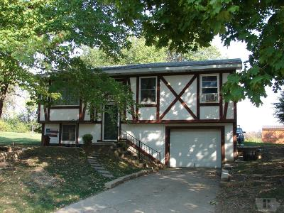 Mount Pleasant Single Family Home For Sale: 1007 N Shepard Drive