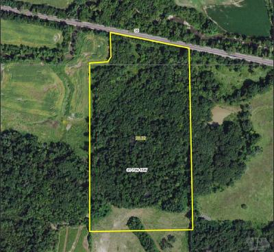 Wapello County Farm For Sale: 136th Street