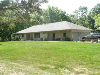 Mount Pleasant Single Family Home For Sale: 1002 S Briarwood Lane