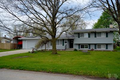 Appanoose County Single Family Home For Sale: 907 Pamela Street