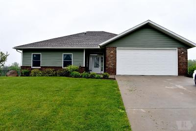 Centerville IA Single Family Home For Sale: $232,500