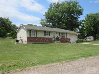 Davis County Single Family Home For Sale: 408 S Bloomfield Ave
