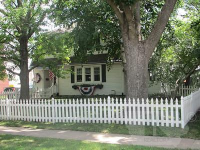 Mount Pleasant Single Family Home For Sale: 408 N Main Street