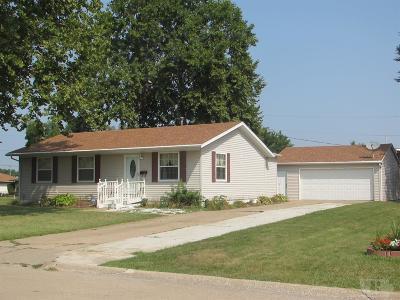 Mount Pleasant Single Family Home For Sale: 713 E Cedar Lane