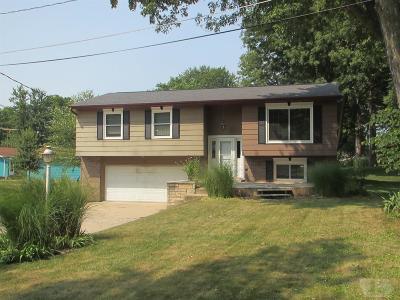Mount Pleasant Single Family Home For Sale: 709 E Alter Drive