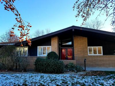 Mount Pleasant Single Family Home For Sale: 1514 S Linden Place