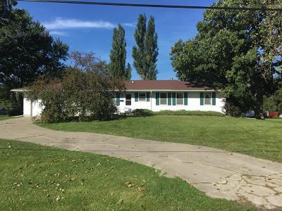 Agency Single Family Home For Sale: 203 Alpine