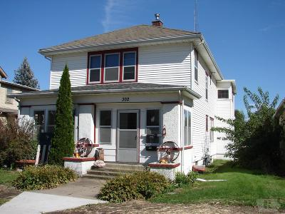Mount Pleasant Single Family Home For Sale: 302 S Main Street