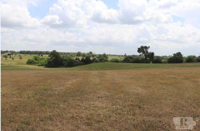 Van Buren County Residential Lots & Land For Sale: Jewel Ave.