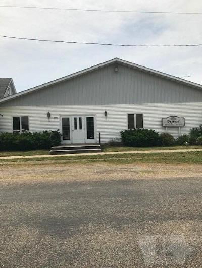 Van Buren County Single Family Home For Sale: 139 Water Street