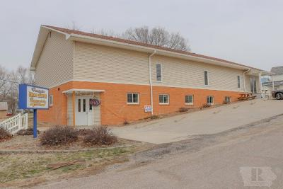 Van Buren County Business Opportunity For Sale: 429 S 3rd Street