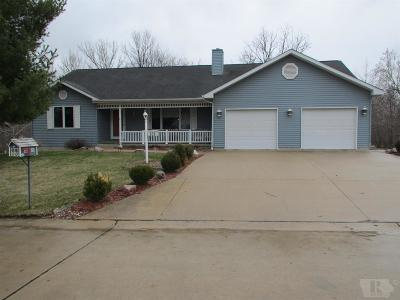 Mount Pleasant Single Family Home For Sale: 606 W State Street