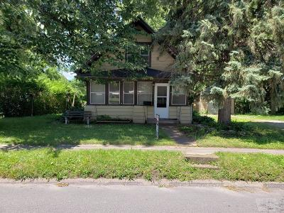 Mount Pleasant Single Family Home For Sale: 411 N White Street