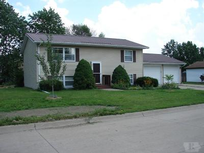Mount Pleasant Single Family Home For Sale: 915 W King Drive