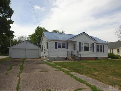 Mount Pleasant Single Family Home For Sale: 105 S Brazelton Street