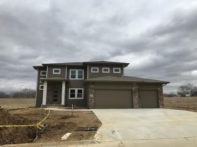 Council Bluffs Single Family Home For Sale: 1787 Sycamore